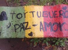 El Parque Tortuguero