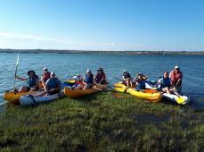 Kayak por las marismas