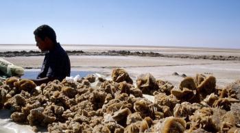 lago salado de Chott el Jerid