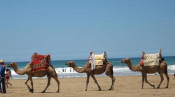 Marruecos adolescentes