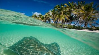 Cancún isla contoy