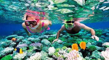 Snorkel Playa Paraiso