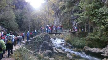 Cazorla Río Borosa