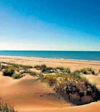 El Parque Natural de Doñana