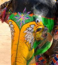 Pintado de Elefantes